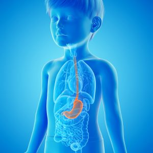 child esophagus image
